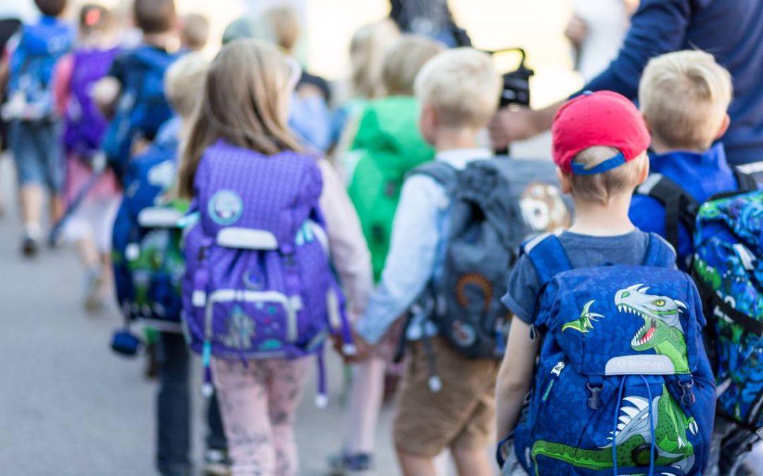 Väitös: koulujen ympäristökasvatuksessa on puutteita – niukasti materiaalia, virheellistä tietoa ja näkökulma hukassa