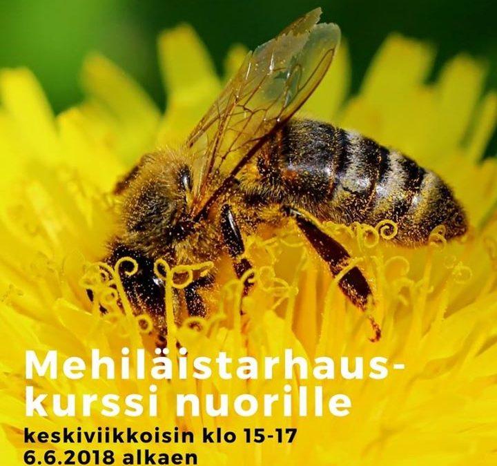 Maistuisiko hunaja?  Ensi kesän ainutlaatuisen mehiläistarhauskurssin sisällöstä…
