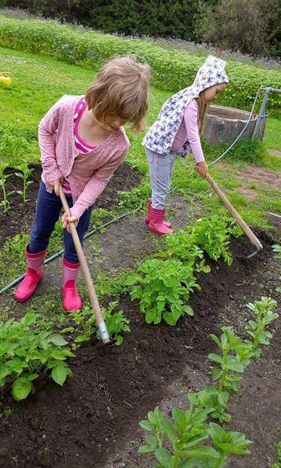 Innokkaat tulevat puutarhurit huomio! Viljelykerhoon haku on käynnissä. Kerho al…