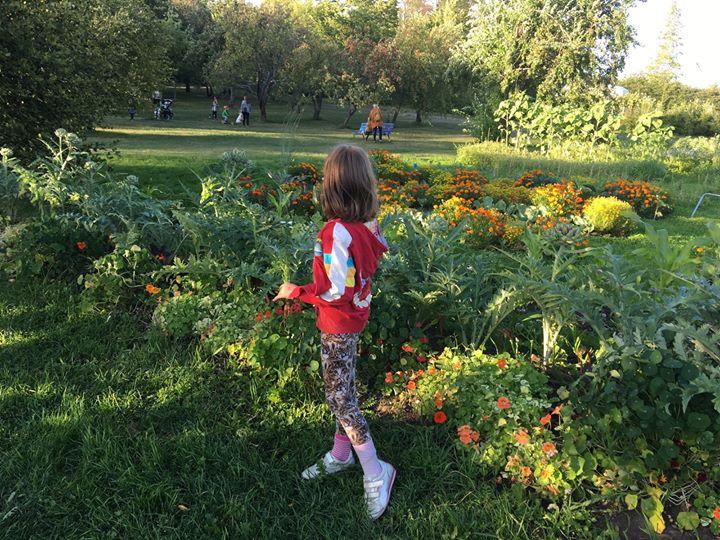 Lasten ja nuorten puutarhayhdistys updated their cover photo.